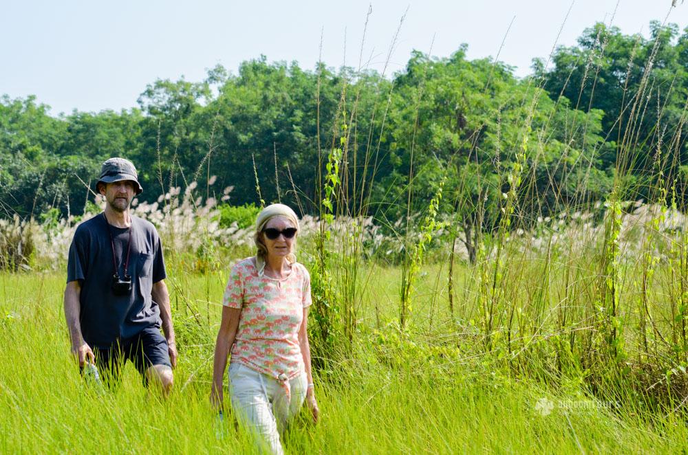 Trekking inside Sundarbans