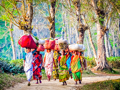 11 Days Highlights of Bangladesh Tour with a multi-award-winning local operator
